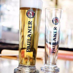 כוסות בירה בייסיק